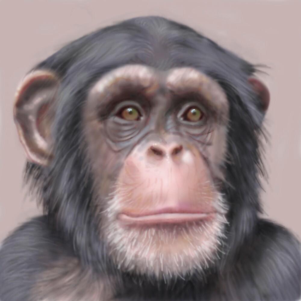 A. Chimp by edwardfish