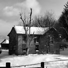 Weathered by Winter by InvictusPhotog
