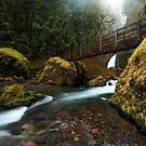 Footbridge over Tanner Creek by Tula Top