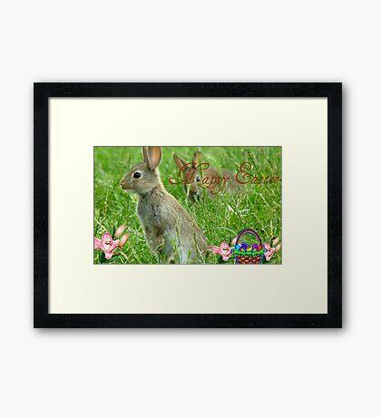 Happy Easter - Wild Bunnies - NZ Framed Print