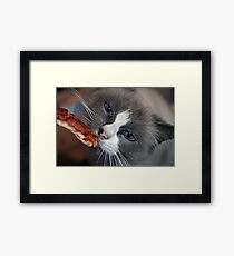 """Does Your Kitty Love Pizza Too ?"" Framed Print"
