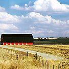 Rural Scene near Olds, Alberta, Canada by Adrian Paul