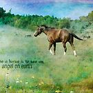 To see a horse is to see heaven on earth by Myillusions