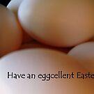 Eggs For Easter by debbiedoda