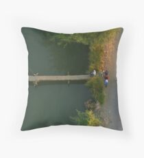 Crossing the Stream - View from Above Throw Pillow
