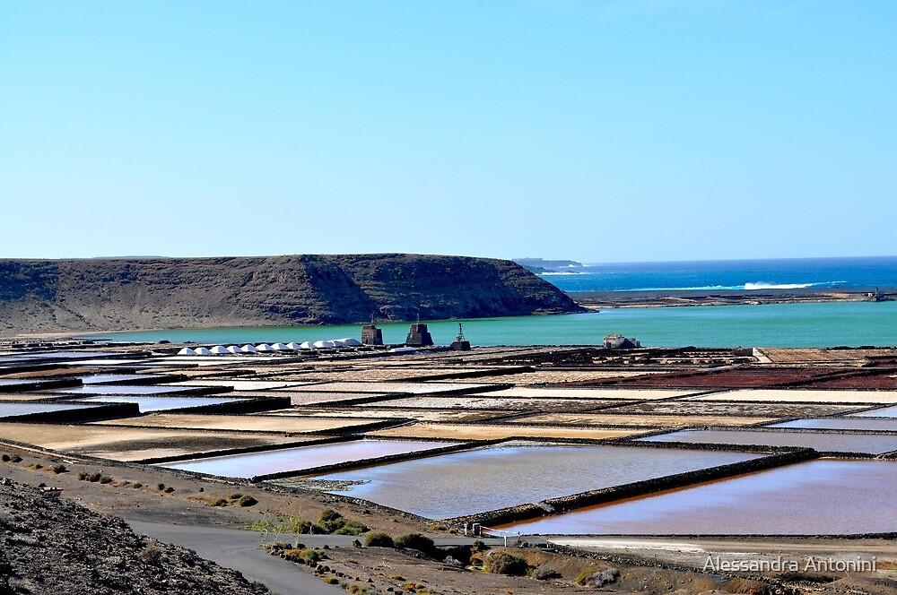Morning on the salt flats of Janubio Lanzarote Canary Island by Alessandra Antonini