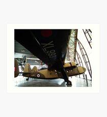 Scottish Aviation Twin Pioneer(XL993) Art Print