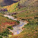 Almost dry riverbed by Rudi Venter