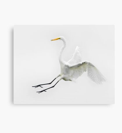 On Approach Canvas Print