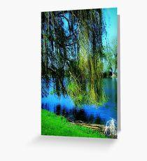 Beautiful weeping willow tree ©  Greeting Card