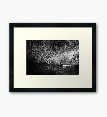 Where Forgotten Toys Go Framed Print