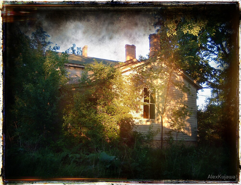 The House Where it Stood by AlexKujawa