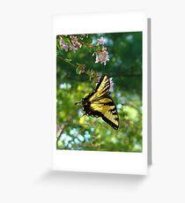 Butterfly Dreams III Greeting Card