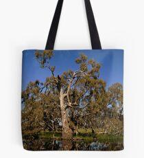 mount william creek Tote Bag