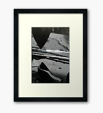 Swimming with the Sharks Framed Print