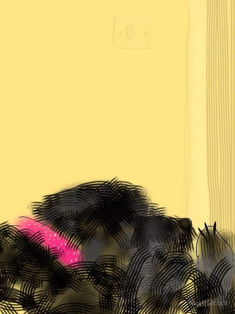 Sleeping Dog by Nigel Silcock