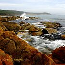 """ Cape Conran Joiners Channel Vic. by helmutk"