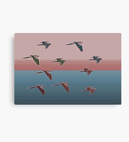Flying Into The Sunset Canvas Print