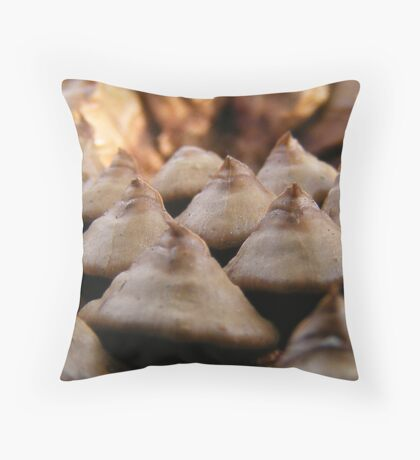 Mystery item, Solved!!! Throw Pillow