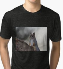 Dualistic light. Eurasian red squirrel Tri-blend T-Shirt