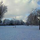 Rock Park Winter Snow by Hucksty