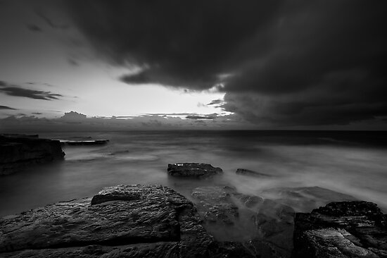 The Front by Mark  Lucey