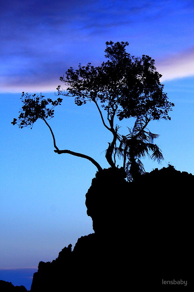 silhouette in blue by lensbaby