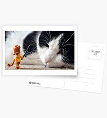Cat-Woman Postcards