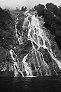 Temporary Milford Sound waterfall by Ian Fegent