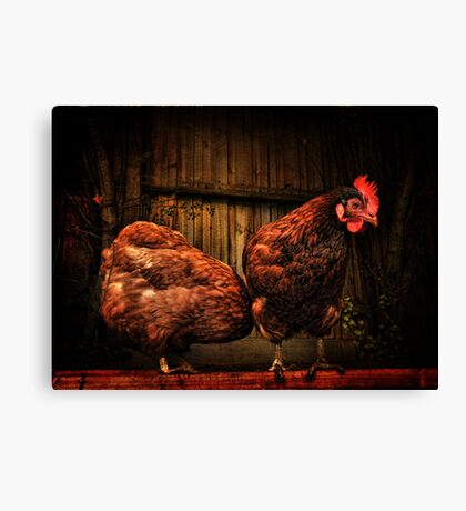 No Rosie, it's definately NOT there! Canvas Print