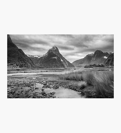 Milford Sound, Fiordland National Park Photographic Print