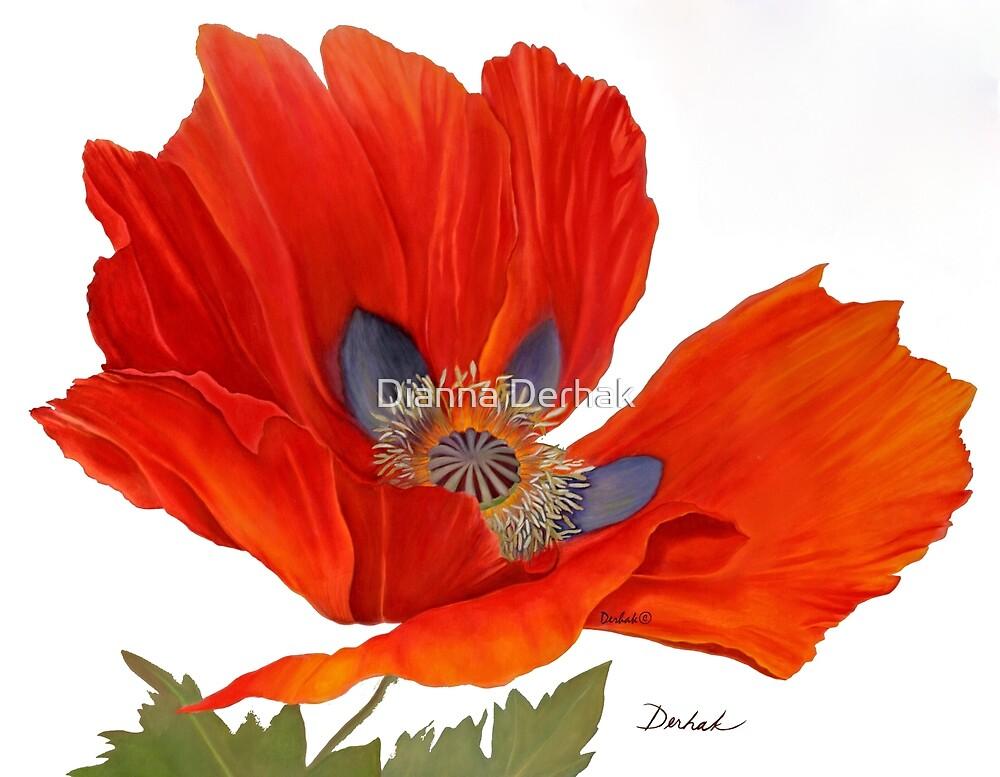 Orange Poppy By Dianna Derhak by Dianna Derhak
