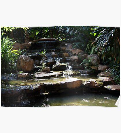 Little Garden Pond Poster