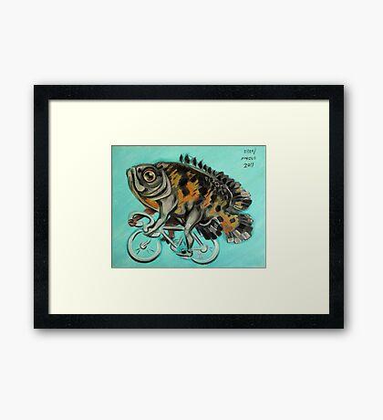 Oscar On A Bicycle Framed Print