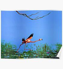 Pink Flamingo Take off Poster
