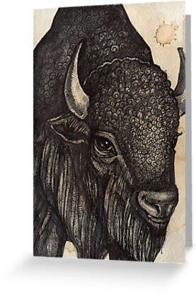 The Black Buffalo by Lynnette Shelley