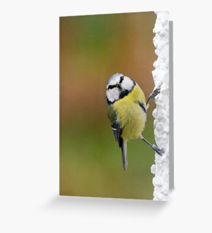 You spotted me Greeting Card