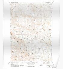 USGS Topo Map Oregon Virtue Flat 281976 1994 24000 Poster