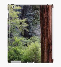 The Silence of Redwoods iPad Case/Skin