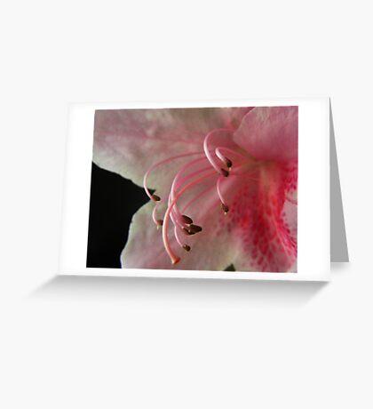 HOOKS Greeting Card