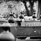 Benches by smilyjay