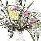 Australian Native Flowers Vase by blueidesign