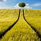 Tree by Simon Siwak