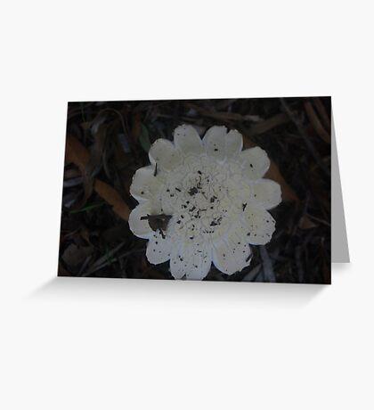 Imitation Flower Greeting Card