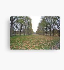 Buckingham Palace lawns Canvas Print
