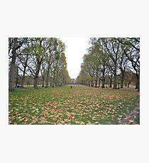 Buckingham Palace lawns Photographic Print