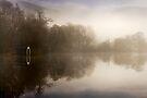 Sunlight on the boathouse... Loch Ard, Trossachs by David Mould