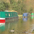 Narrowboats on Llangollen Canal by SimplyScene