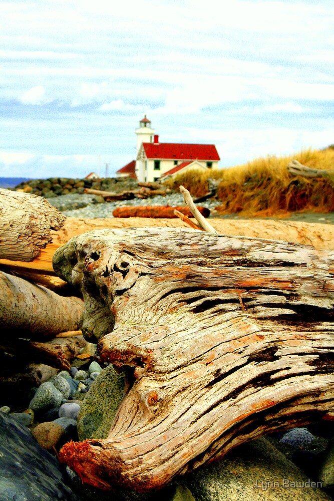 Point Wilson Lighthouse and Driftwood by Lynn Bawden