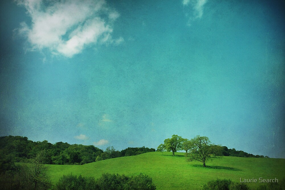 Green Grass, Blue Sky by Laurie Search